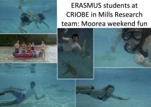 ERASMUS_sharks